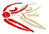logo-LICEXBALLET-mail